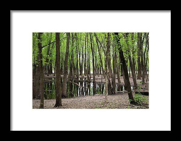 Chaska Framed Print featuring the photograph Minnesota River Valley by Chip Jones
