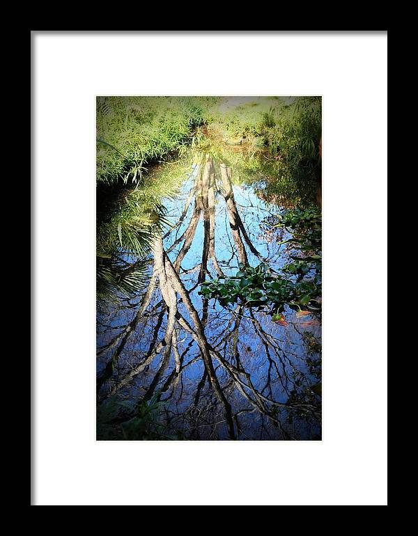 Reflection Framed Print featuring the photograph Mirror For The Sun by Mandy Shupp