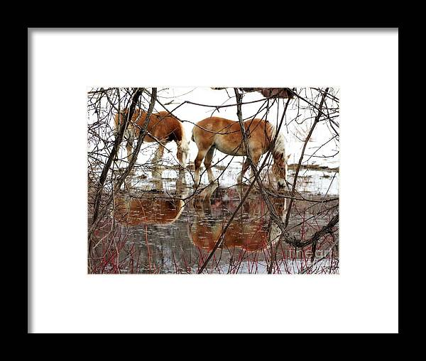 Workhorses Vermont Farming Framed Print featuring the photograph Mirror Magic by Karen Velsor