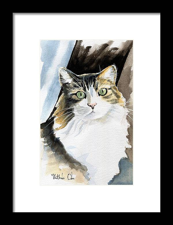 Lucy-cat Lucy Cat: