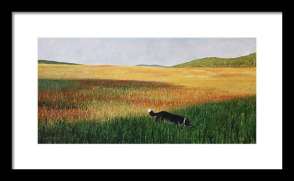 Dog Framed Print featuring the painting Missy In The Field by Allan OMarra