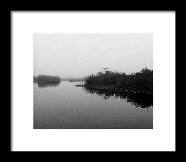 Nature Framed Print featuring the photograph Misty Glades by Cindy Gregg