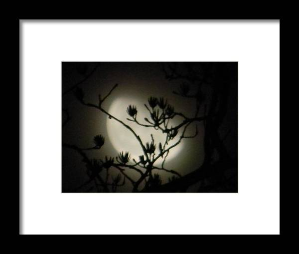Moon Framed Print featuring the photograph Misty Moon by Eric Barich