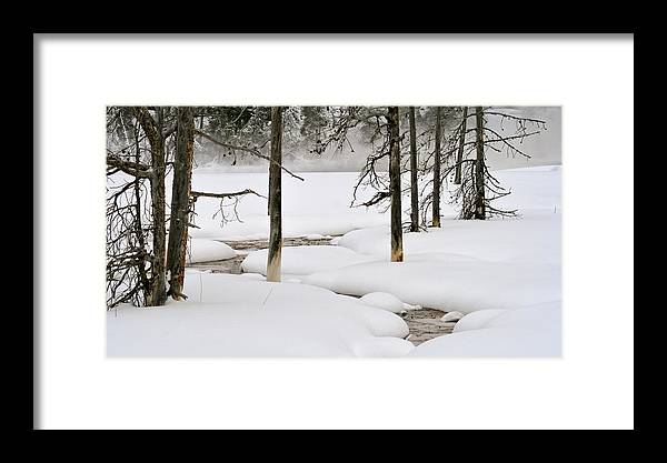 Yellowstone Framed Print featuring the photograph Misty Morn by Susan Rissi Tregoning
