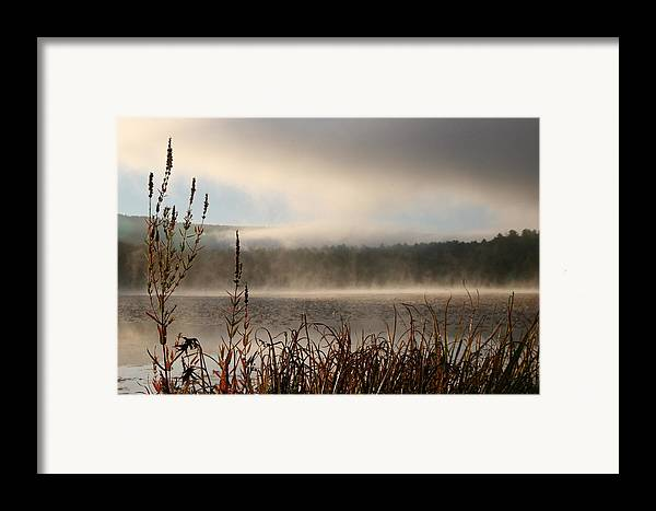Misty Morning Framed Print featuring the photograph Misty Morning by Linda Russell