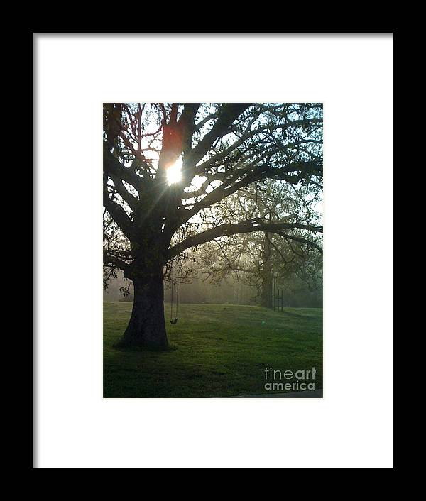 Mist Framed Print featuring the photograph Misty Morning by Nadine Rippelmeyer