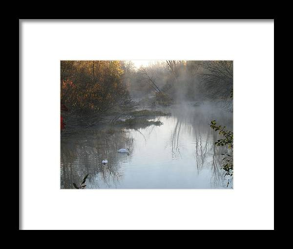 Nature Framed Print featuring the photograph Misty Morning by Ralph Baginski