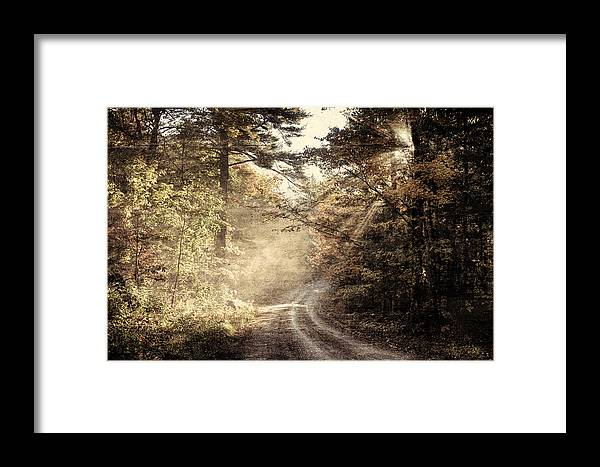 #foliage_reports Framed Print featuring the photograph Misty Mountain Road by Jeff Folger