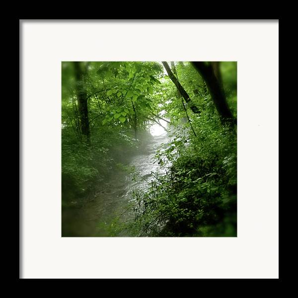 Water Framed Print featuring the pyrography Misty Stream by Tina Valvano
