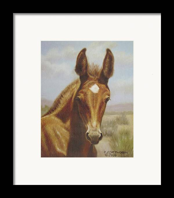 Framed Print featuring the painting Molly Mule Foal by Dorothy Coatsworth