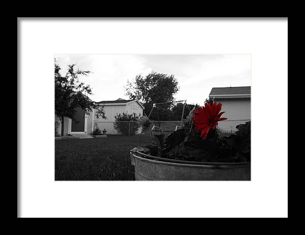 Backyard Framed Print featuring the photograph Mom's Backyard by Dylan Punke