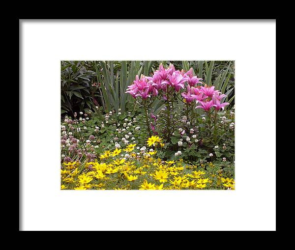 Mother Framed Print featuring the photograph Moms Garden by Ann Willmore