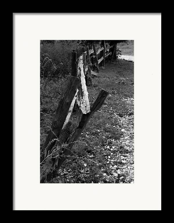 Ansel Adams Framed Print featuring the photograph Momsvisitfence2 by Curtis J Neeley Jr