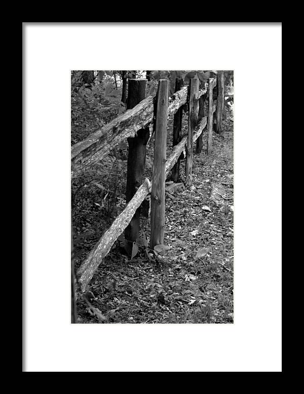 Ansel Adams Framed Print featuring the photograph Momvisitfence-carterlane by Curtis J Neeley Jr