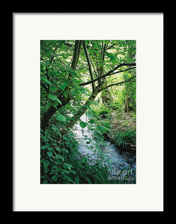 Photography Framed Print featuring the photograph Monet's Garden Stream by Nadine Rippelmeyer