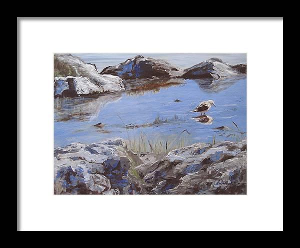 Animal Framed Print featuring the painting Mono Lake by Barbara Andolsek