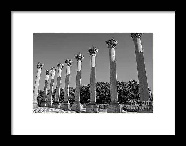 Columns Framed Print featuring the photograph Monochrome Columns by Clark DeHart