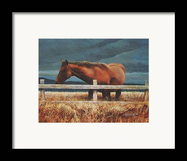 Hores Framed Print featuring the painting Montana Mare Study by Steve Greco