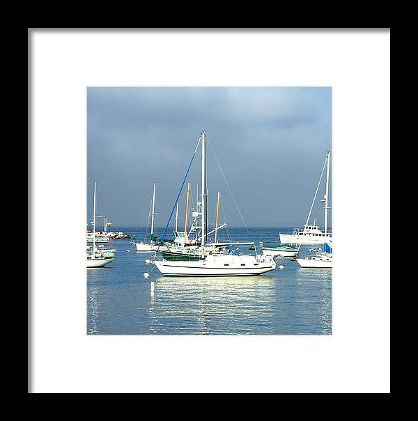 Seascapes Framed Print featuring the photograph Monterey Bay by Donna Thomas