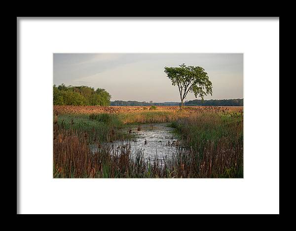 Sunrise Framed Print featuring the photograph Montezuma Morning by Rod Best