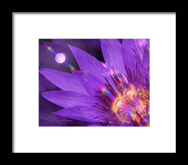 Flower Framed Print featuring the mixed media Moon Flower by Pamula Reeves-Barker