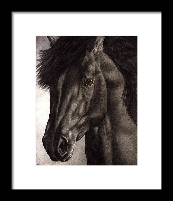 Horse Framed Print featuring the painting Moondark by Pat Erickson