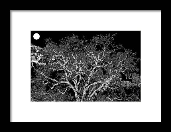 Photo Design Framed Print featuring the digital art Moonlit Night by Will Borden