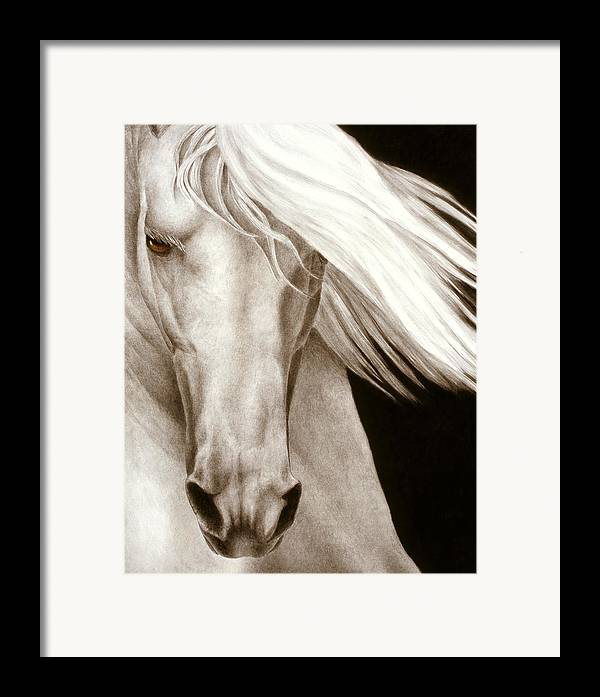 Horse Framed Print featuring the painting Moonrise by Pat Erickson