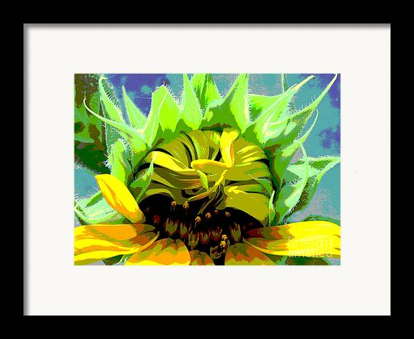Sunflowers Framed Print featuring the photograph Morning Awakening by Lori Mellen-Pagliaro