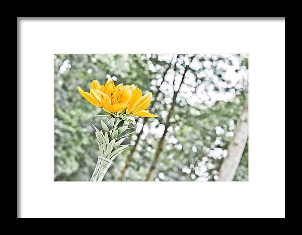 Flower Framed Print featuring the digital art Morning By Morning by Michelle Shockley