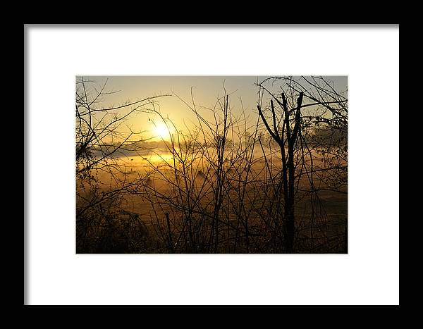 Sunrise Framed Print featuring the photograph Morning Fields Of Houma by James Luce