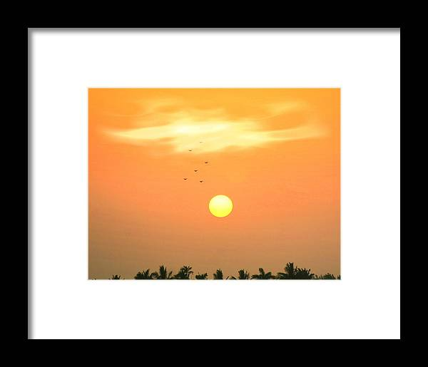 Sunrise Framed Print featuring the photograph Morning Flight by Diane Merkle