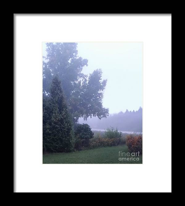 Tree Framed Print featuring the photograph Morning Fog by Diamante Lavendar