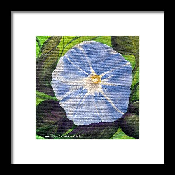Morning Glory Framed Print featuring the painting Morning Glory by Sharon Marcella Marston