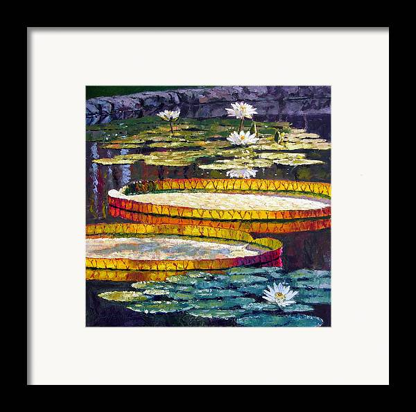 Water Lilies Framed Print featuring the painting Morning Glow by John Lautermilch