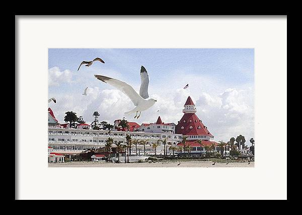 Beach Framed Print featuring the photograph Morning Gulls On Coronado by Margie Wildblood