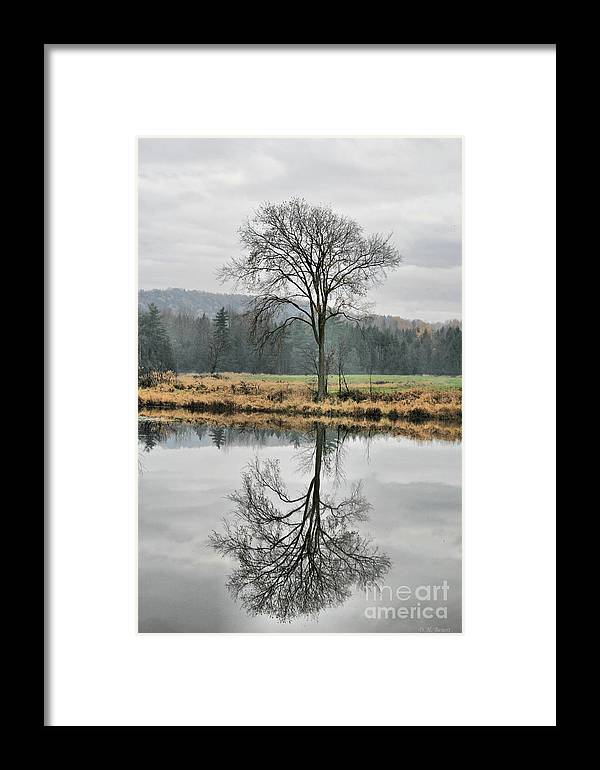 Reflections Framed Print featuring the photograph Morning Haze And Reflections by Deborah Benoit