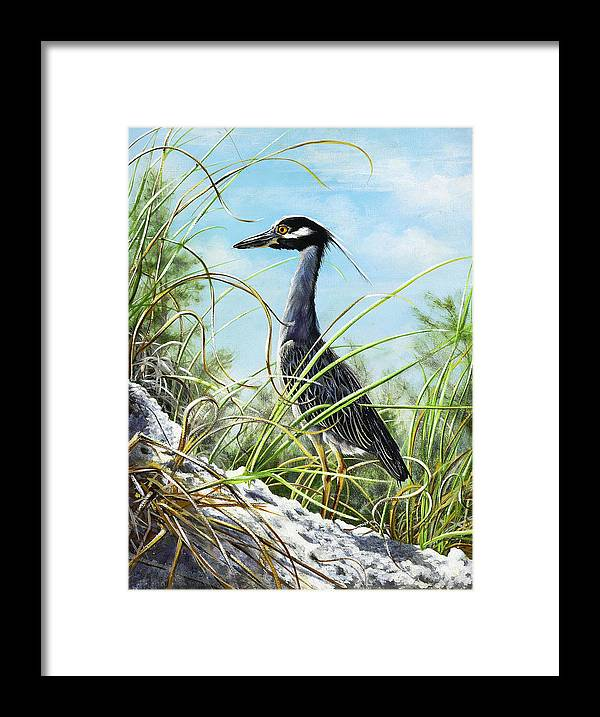 Bird Framed Print featuring the painting Morning Hunt by Joan Garcia