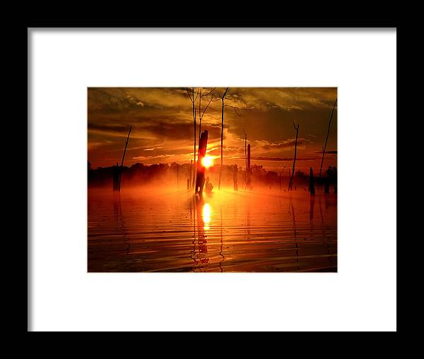 Water Framed Print featuring the photograph Morning Mist by William Caine