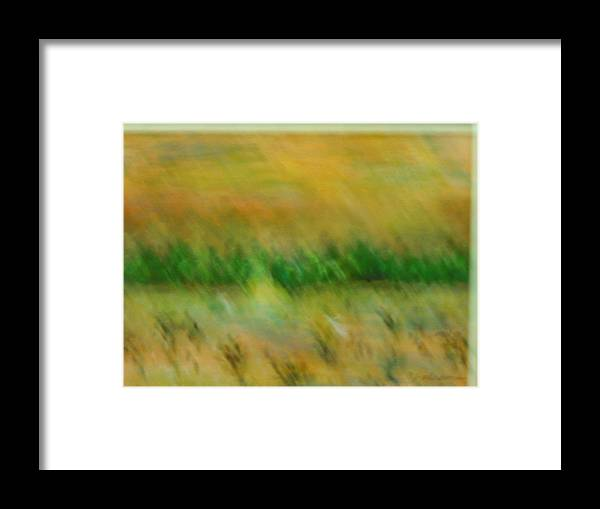 Water Framed Print featuring the painting Morning on the lake with whooping cranes by BJ Abrams