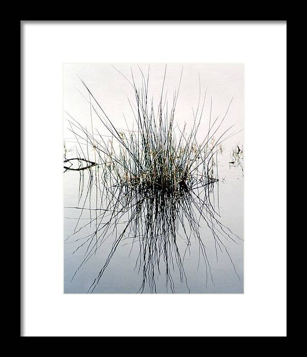 Landscape Framed Print featuring the photograph Morning Reflection by Cindy Gregg
