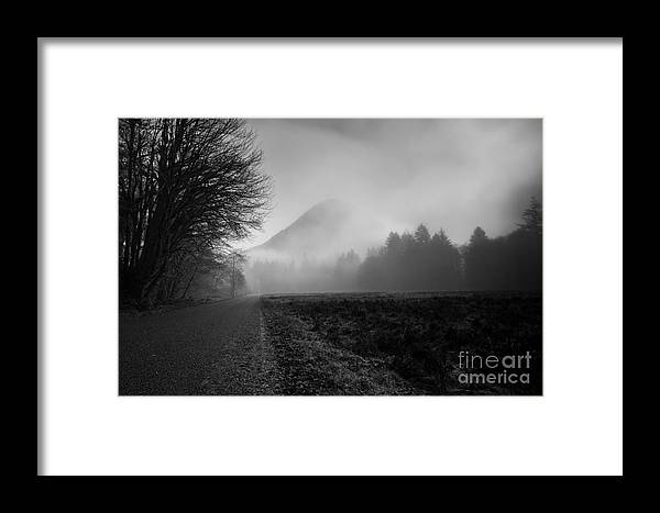 Olympic National Park Framed Print featuring the photograph Morning Scene In Olympic National Park by Arndt Hufenbach