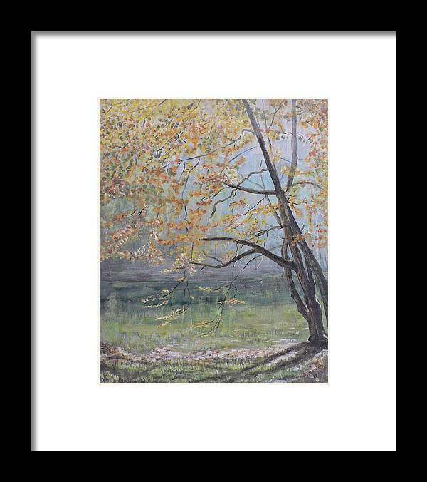 Trees In The Fall Framed Print featuring the painting Morning Solitude by Dan Bozich