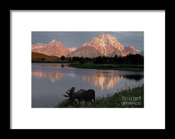 Grand Teton Framed Print featuring the photograph Morning Tranquility by Sandra Bronstein