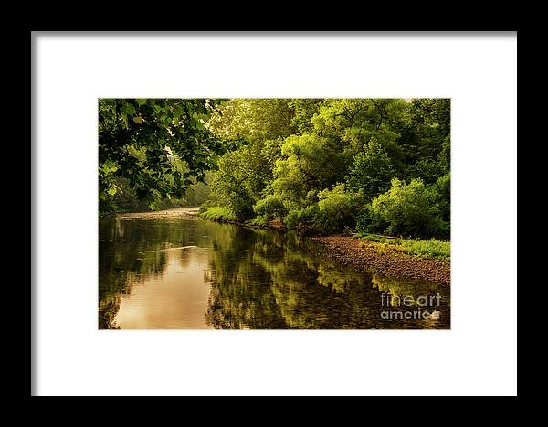 Williams River Framed Print featuring the photograph Morning Warmth Williams River by Thomas R Fletcher