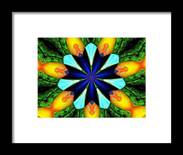 Flower Framed Print featuring the photograph Morningglory by Maxwell Kerr