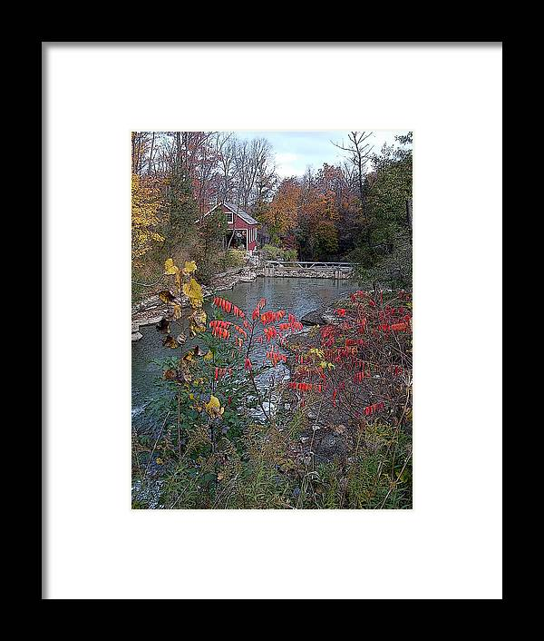 Morningstar Mill Sumac Water Landscape Framed Print featuring the digital art Morningstar Sumac by Art Tilley