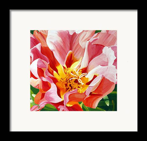 Macro Flower Framed Print featuring the painting Moss Rose by Julie Pflanzer