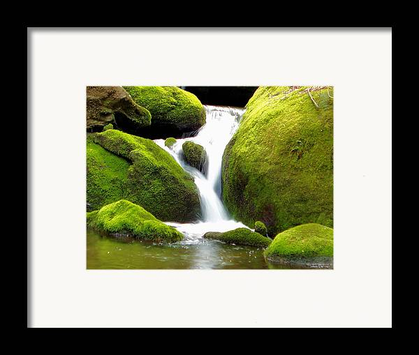 Nature Framed Print featuring the photograph Mossy Falls by Johann Todesengel
