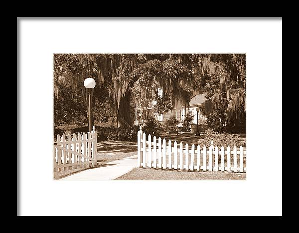 Picket Fence Framed Print featuring the photograph Mossy Live Oak And Picket Fence by Carol Groenen